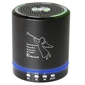 Wireless Portable Mini Bluetooth Speaker Build in Microphone For Handfree Phone call Support TF/USB/Radio