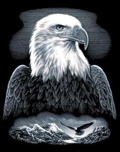 Reeves - Scraperfoil Eagle by Reeves