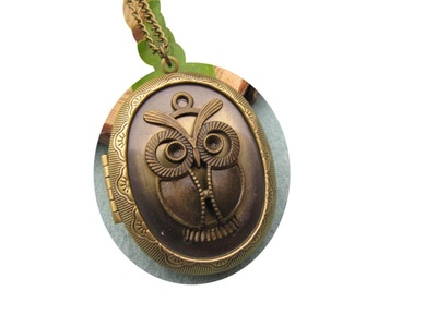 Owl Pendant Necklace,Owl Locket, Owl Locket Necklace, Owl Photo Locket Jewelry, Owl Jewelry Necklace,