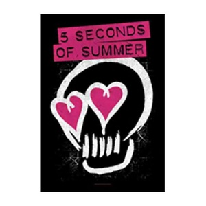 5 Seconds Of Summer - Poster Flag