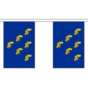 Sussex Bunting 3m Long With 10 Flags 9x6 English County by Sussex