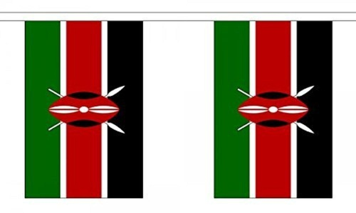 Kenya Bunting 9M Metre Length With 30 Flags 9X6 100% Woven Polyester by kenya