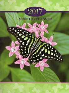 2017 Personal Monthly Planner / Calendar / Organizer - Monthly Page Format - v7
