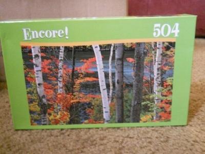 Encore 504 Piece Puzzle ~ Chapel Pond Dix Mountain Wilderness by Encore
