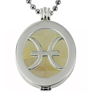 Quiges - Silver Plated Women Stainless Steel Necklace with Coin Locket and Oval Coin #568