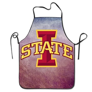 Iowa State University Logo Fashion Chef Unisex Apron
