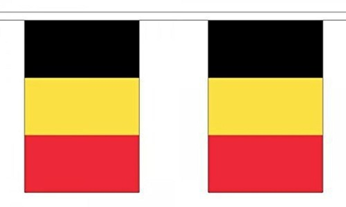 Belgium Bunting 9M Metre Length With 30 Flags 9X6 100% Woven Polyester by Belgium