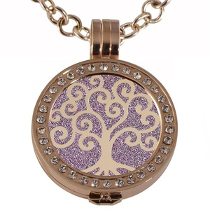 Quiges - Women Stainless Steel Necklace with 25mm Coin Locket and Coin Tree of Life/Flower of Life #1604