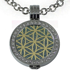 Quiges - Women Stainless Steel Necklace with 25mm Coin Locket and Coin Tree of Life/Flower of Life #1696