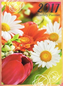 2017 Personal Monthly Planner / Calendar / Organizer - Monthly Page Format - v8