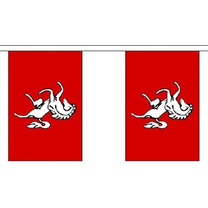 Kent 9M Long - 30 Flags Bunting English County England British Region Decoration by Kent