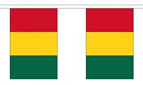 Guinea Bunting 9M Metre Length With 30 Flags 9X6 100% Woven Polyester by Guinea