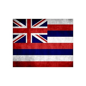 American US USA State Hawaii Flag fade-resistant Poster 20
