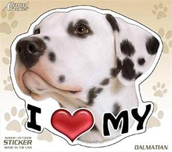 AGI I Love My Dalmatian Dog 4