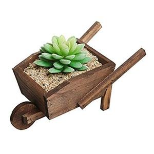 Hanmade Mahogany(color) Cart Wood Cacti&Succulent Planter