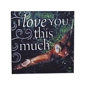 Zipper Pals 00180000053 Canvas Magnets - I Love You This Much