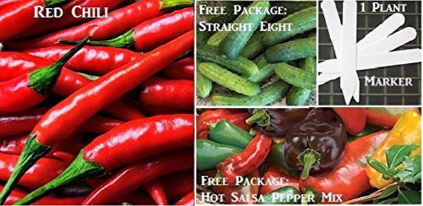 Thai Red Chili Pepper Seeds 153 Seeds Upc 646263361139 + 1 Plant Marker