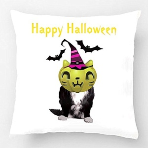 ALEX Throw Pillow Case Decorative Cushion Cover Cotton Polyester Sofa Chair Seat Square Pillowcase Design With Throw Fun Halloween Cat Custom Pillow Case Print Double Side Sized 20X20 Inches