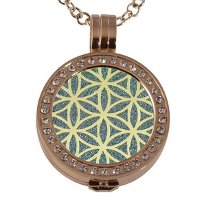 Quiges - Women Stainless Steel Necklace with 25mm Coin Locket and Coin Tree of Life/Flower of Life #1708