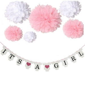 Joinwin It's a Girl Decorations,It's a Girl Bunting Banners and Tissue Paper Flower Pom Poms Pink/White (12pcs) Party Decoration Accessory for Baby Shower Party Room Decoration