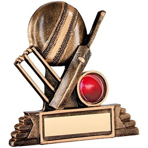 JR6-RF116A Brz/Gold Resin Cricket Trophy - (1in Centre) 4.25in Includes Free Engraving (Up to 30 Characters) by Lapal Dimension