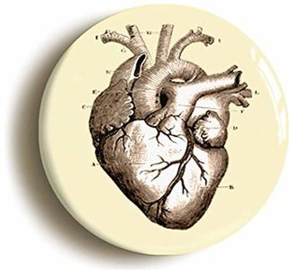 Human Brain Anatomy Button Pin (Size 1inch Diameter) Doctor Nurse