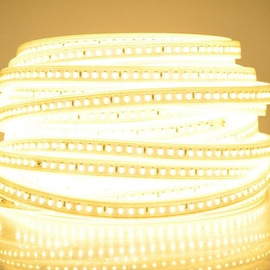 Pomelotree Flexible Strip Light with Warm White Kit 65.6 ft. 1200 LEDs SMD 5050 Waterproof IP67, 44 Keys 24V Remote Controller