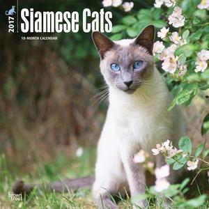 Siamese Cats Calendar 2017 ~ Deluxe Wall Calendar (12x12)