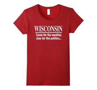 Women's Wisconsin: Come for the weather... Funny Wisconsin T-shirt Small Cranberry