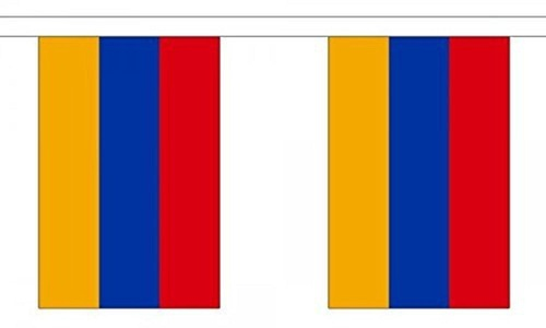 Armenia Bunting 9M Metre Length With 30 Flags 9X6 100% Woven Polyester by Armenia