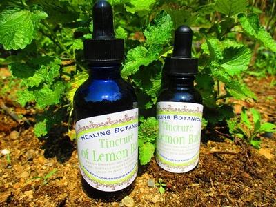 Organic NH Herb Tincture of Lemon Melissa Officinalis Balm