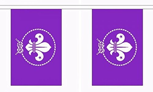 Scouts Purple Bunting 9M Metre Length With 30 Flags 9X6 100% Woven Polyester by Senegal