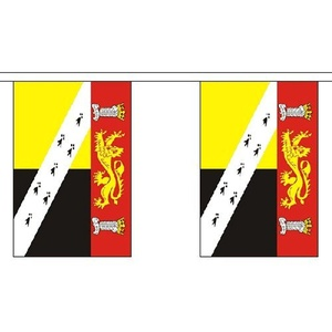 Norfolk 9M Long - 30 Flags Bunting England English County Decoration by Norfolk