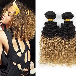 Top Hair Peruvian Unprocessed Virgin Curly Weaves Afro Kinky Curly Human Hair Extensions Ombre Color 12 14 16 inches 100g/Bundle