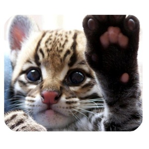DreamOffice-Custom Give Me Five Cat Mouse pad Gaming Mouse Mat Cloth Cover Support Wired Wireless or Bluetooth Mouse,9.84