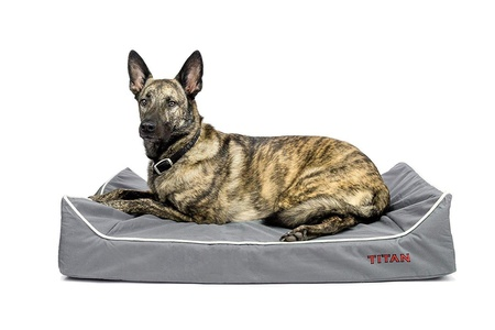 Titan Dog Bed- Chew Resistant, Memory Foam, Washable Cover, Waterproof Liner - Durable Premium Dog Bed