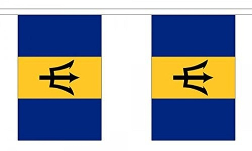 Barbados Bunting 9M Metre Length With 30 Flags 9X6 100% Woven Polyester by Barbados