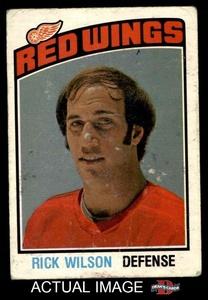 1976 O-Pee-Chee NHL # 293 Rick Wilson Detroit Red Wings (Hockey Card) Dean's Cards 2 - GOOD