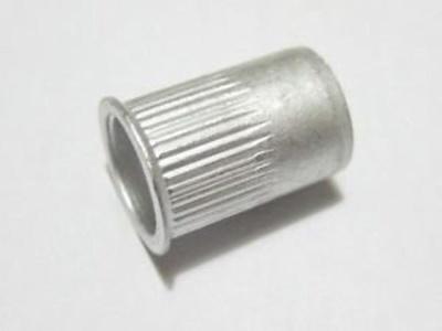 Industrial Rivet - 1/4-20 Long SS Nutcert