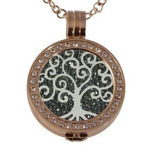 Quiges - Women Stainless Steel Necklace with 25mm Coin Locket and Coin Tree of Life/Flower of Life #1334