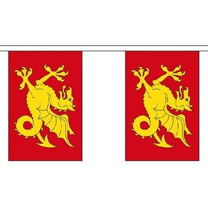 Wessex 9M Long - 30 Flags Bunting England English County Decoration by Wessex