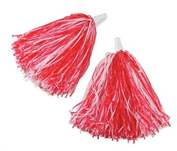 RG Costumes Mixed Pom Poms by RG Costumes