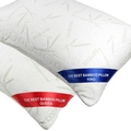 The Original Best Bamboo Rayon from Bamboo Memory Foam Pillow (Queen size 19 x 28 Inches)