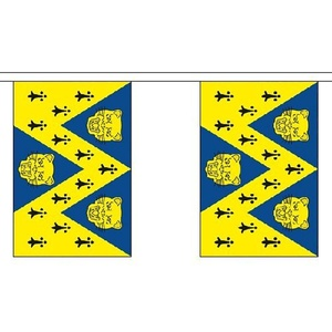 Shropshire New Bunting 3m Long With 10 Flags 9x6 English County by Shropshire New