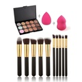 Andercala 15 Color Makeup Concealer Contour Palette + 10pcs Makeup Brush + 2pcs makeup Sponge 5038