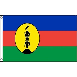 New Caledonia Flag 5Ft X 3Ft Caledonian France French Banner With 2 Eyelets New by New Caledonia