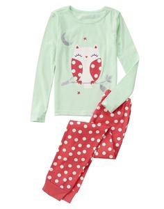 Crazy 8 Owl 2-Piece Pajama Set 6-12 mo