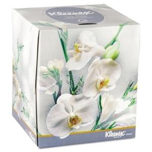 KLEENEX BOUTIQUE TwoPly White Facial Tissue 95 Tissues/Box 36 Boxes/Carton by Kleenex