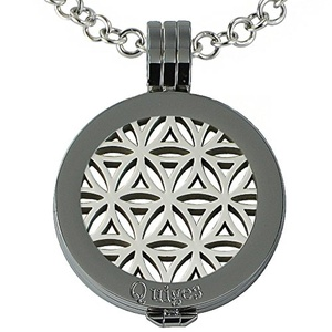 Quiges - Women Stainless Steel Necklace with 25mm Coin Locket and Coin Tree of Life/Flower of Life Set #760