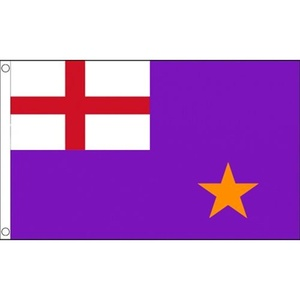 Purple Standard Flag 5Ft X 3Ft Northern Ireland Irish Banner With 2 Eyelets New by Purple Standard